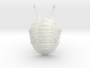 Stalk Eyed Asaphus Kowalewskii (no stand) in White Natural Versatile Plastic