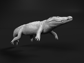 Nile Crocodile 1:35 Lying in Water in White Natural Versatile Plastic
