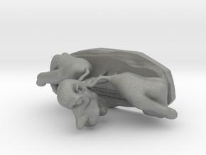 Cortex Man (Coritcal Homunculus) in Gray PA12