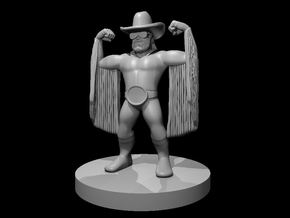 Dwarf Wrestler Bard in Smooth Fine Detail Plastic