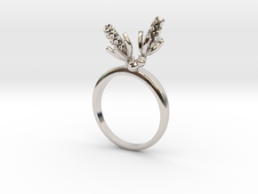 Hyacinth ring with two small flowers L in Rhodium Plated Brass: 7.25 / 54.625