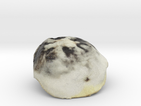The Azuki Manju in Full Color Sandstone