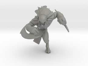 Blood Hunter miniature model fantasy games rpg dnd in Gray PA12