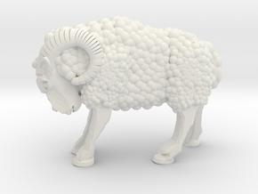 Ram in White Natural Versatile Plastic
