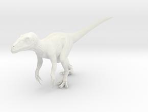 Raptor Jurassic Park novel in White Natural Versatile Plastic: Small
