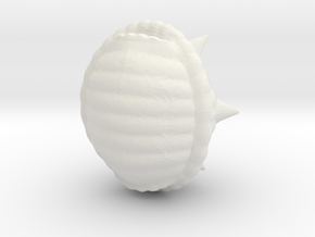 Spikey Shell Big in White Natural Versatile Plastic