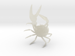 Fiddler Crab - Small in Transparent Acrylic