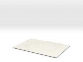 Picture 1 in White Natural Versatile Plastic
