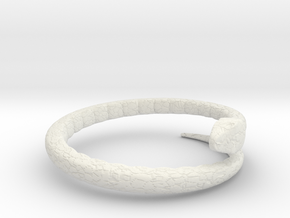 Snake rig in White Natural Versatile Plastic