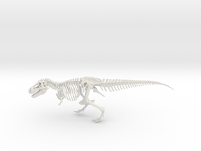 Dinosaur Tyrannosaurus rex Skeleton in White Strong & Flexible