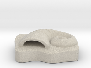 The Great Helix Fossil in Natural Sandstone