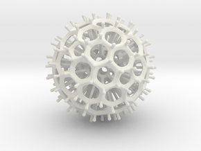Radiolarian in White Natural Versatile Plastic