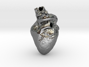 Real Anatomical Heart Hollow in Polished Silver