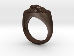 Lion signet ring in Matte Bronze Steel