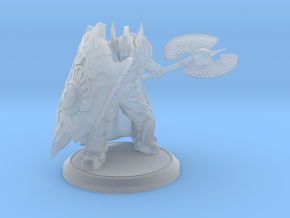 Pigeon,  Paladin Protector of the Forlorn - 28 mm  in Smooth Fine Detail Plastic