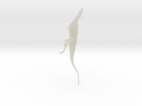 Majunga 172 shapeways 1 in Transparent Acrylic
