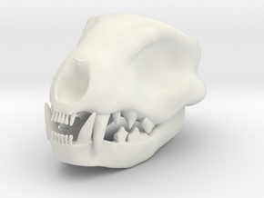 Cat Skull 1.5 Inches in White Natural Versatile Plastic
