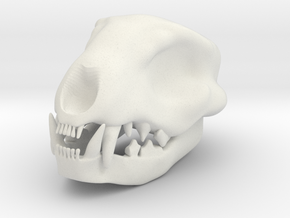 Cat Skull 3 Inches in White Strong & Flexible