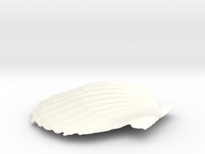 Scallop Shell in White Processed Versatile Plastic