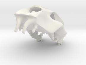 Tiger Skull pendant  in White Natural Versatile Plastic
