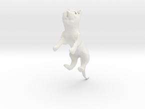 Cat in White Natural Versatile Plastic