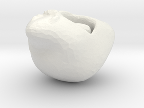 ALIEN in White Natural Versatile Plastic
