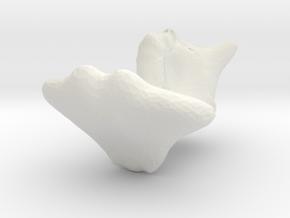 4973 in White Natural Versatile Plastic