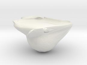 vilmos5 in White Natural Versatile Plastic