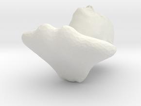 4101 in White Natural Versatile Plastic