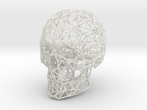 Wireframe Skull Display in White Strong & Flexible