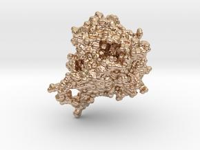 Glycosyltransferase A in 14k Rose Gold