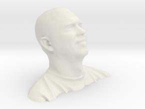 Brad With Per Vertex Colour in White Natural Versatile Plastic