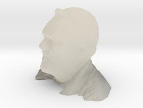 Michael's Head in White Acrylic