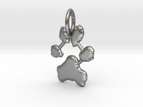 Custom Paw Print Pendants - Roxy's Paw Print in Natural Silver