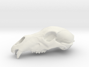 Bear Skull. WT-07. 6cm.  in White Strong & Flexible