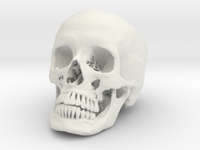Jack-o'-lantern skull from CT scan, half size in White Strong & Flexible