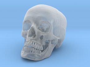 Jack-o'-lantern skull from CT scan, full size in Smooth Fine Detail Plastic