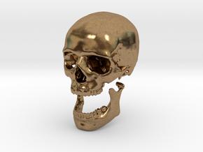 42mm 1.65in Human Skull Crane Schädel че́реп in Natural Brass