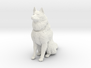 Dog Figurine - Sitting Finnish Spitz (hollow) in White Natural Versatile Plastic
