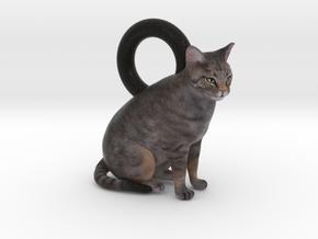 Custom Cat Earrings - Chessie in Full Color Sandstone