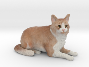 Custom Cat Figurine - Jupiter in Full Color Sandstone