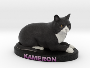 Custom Cat Figurine - Kameron in Full Color Sandstone