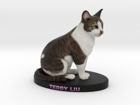 Custom Cat Figurine - Teddy Liu in Full Color Sandstone