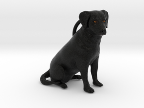 Custom Dog Figurine - Noodle in Full Color Sandstone