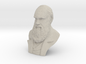 "Charles Darwin 9"" Bust in Natural Sandstone"