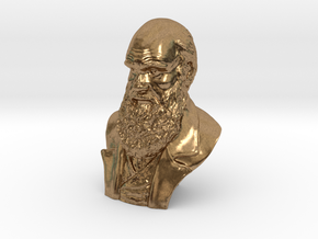 "Charles Darwin 2"" Bust in Natural Brass"
