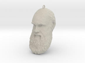 "Charles Darwin 6"" Head with Hanger, Ornament in Natural Sandstone"