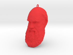 "Charles Darwin 6"" Head with Hanger, Ornament in Red Processed Versatile Plastic"