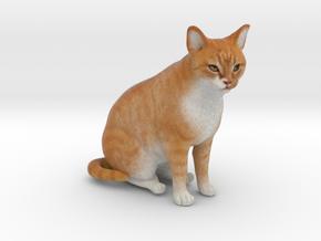 Custom Cat Figurine - Hunter in Full Color Sandstone