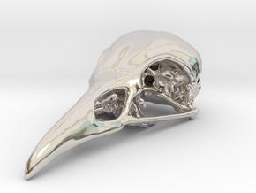 Bird Skull Pendant/Bead in Platinum